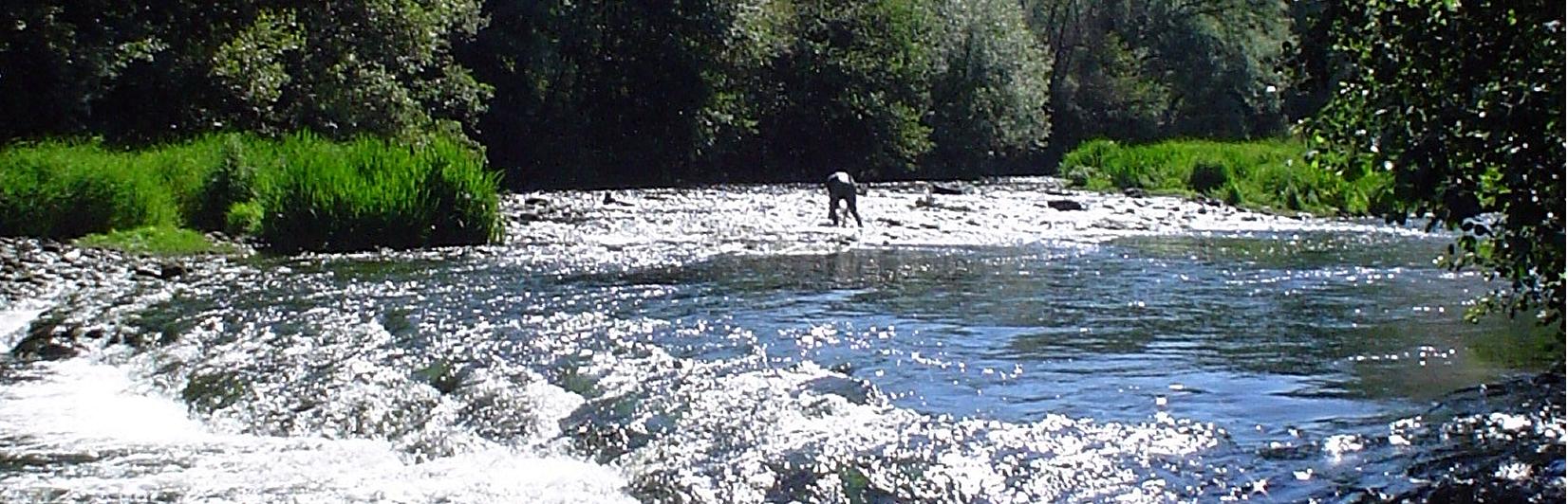 aguas1
